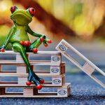 frog-1160803_960_720