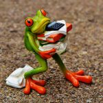 frog-1339892_960_720