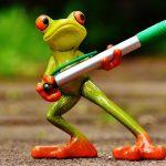 frog-1446239_960_720
